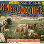 Prentkaart uit eerste kwart 20ste eeuw
