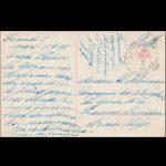 8 maart 1919  VAR 00288