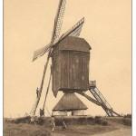 oude molen Tessenderlo